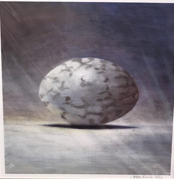 Joyce Pinch, Nightjar Egg