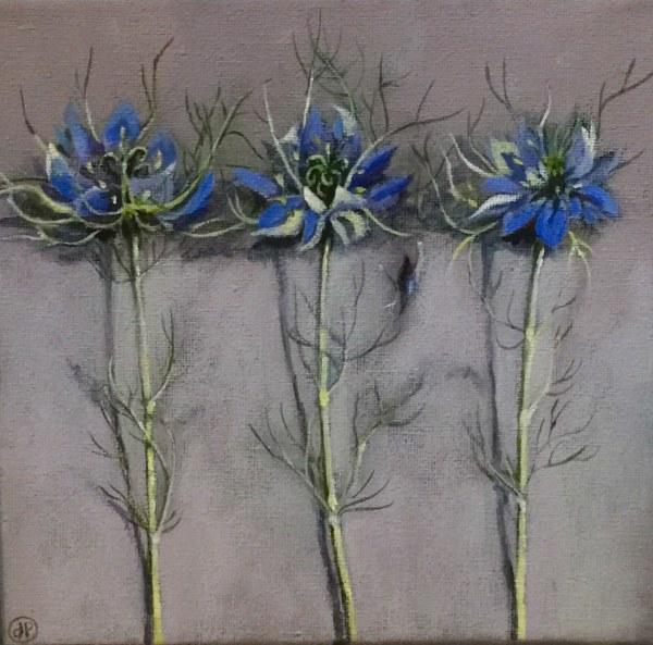 Joyce Pinch, Three Nigella