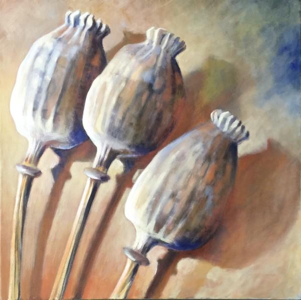 Joyce Pinch, Three Poppy Seed Heads