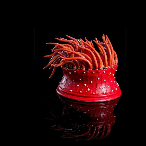 Frances Doherty, Strawberry Sea Anemone