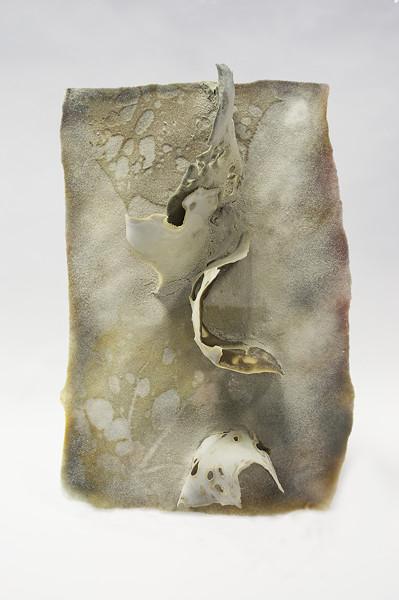 Tomoko Abe, Beneath the ash, 2018