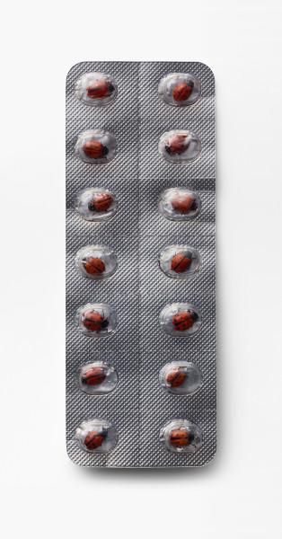 Nancy Fouts, Pills