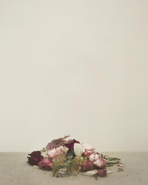 Casper Sejersen, Fallen Flowers, 2019
