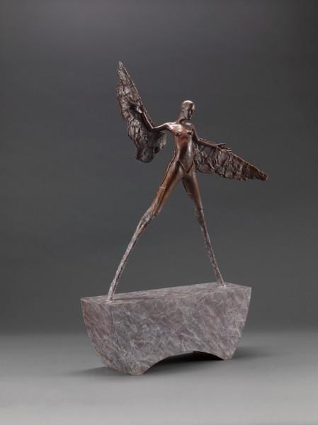 Patrick Vermeiren, Wings of leather