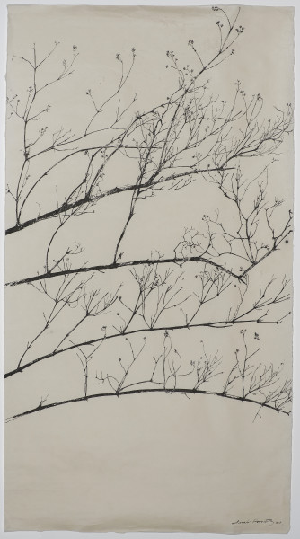 Sarah Horowitz, Winter Branches, 2018