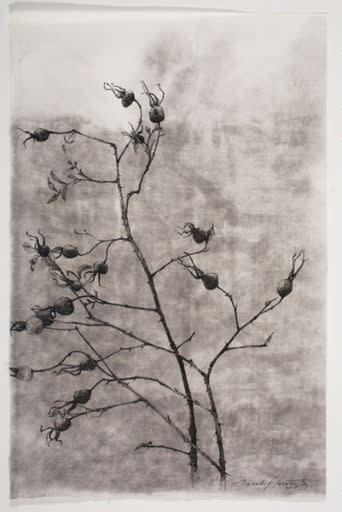Sarah Horowitz, Rosehips Fade, 2015