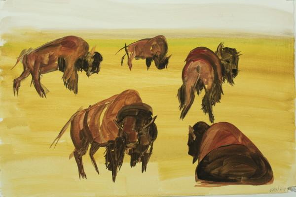 Kay WalkingStick, American Bison, 2017