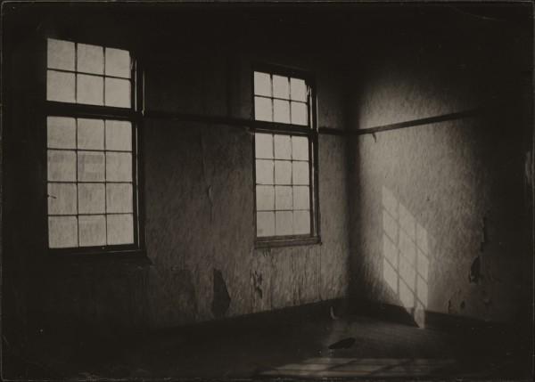 Ben Cauchi, Interior / Exterior, 2013