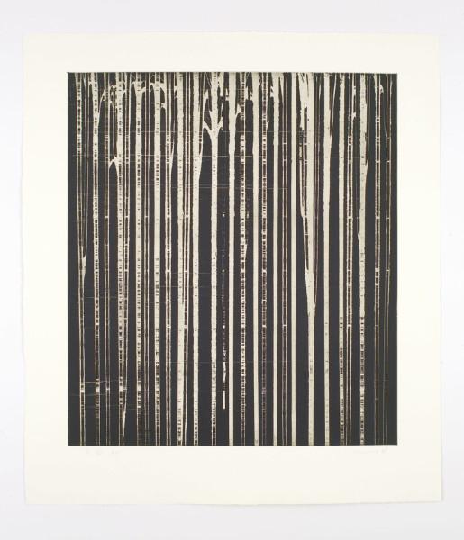 Callum Innes, R VI, 2008