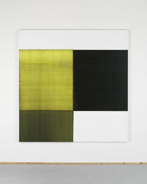 Callum Innes, Exposed Painting Bright Green Lake, 2018