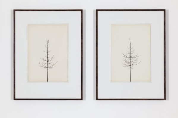 Peter Liversidge, Pair of Winter Drawings 22vs25 and 17vs20, 20 February 2014, 2014