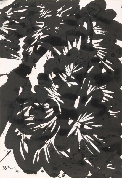Huang Zhiyang 黄致阳, Morphological Ecology 017 形象生态017, 2000