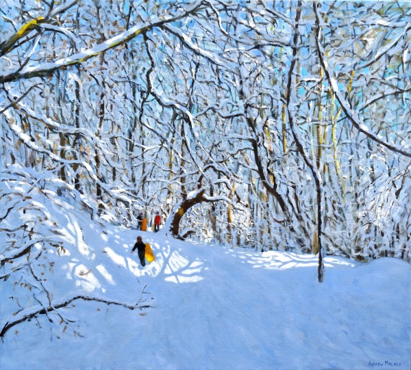 Andrew Macara, Yellow and Orange Sledges, Allestree Park, Derby