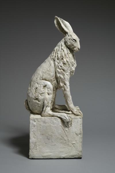 Tanya Brett, Hare VIII