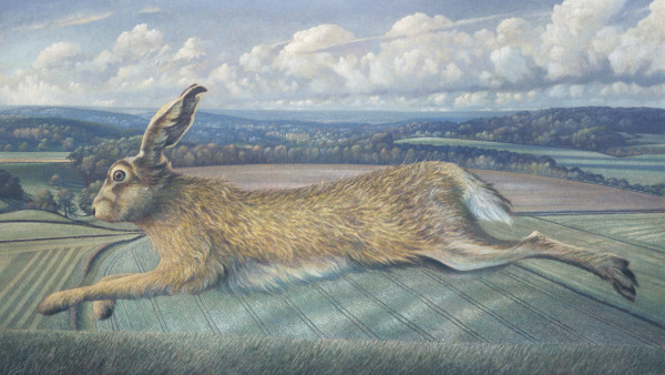 James Lynch, The Longleat Hare