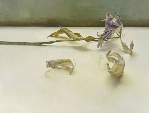 Susan Angharad Williams, Gold and Purple Lily