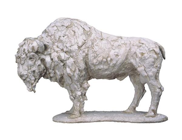 Tanya Brett, American Bison