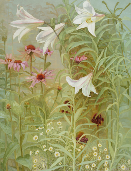Jane Wormell, Lilies, Echinacea and Daisies