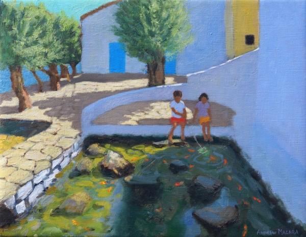 Andrew Macara, Fish Pond, Milos, Greece
