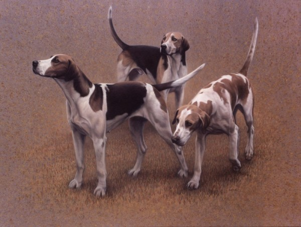 Gary Stinton, Vale of The White Horse Foxhounds