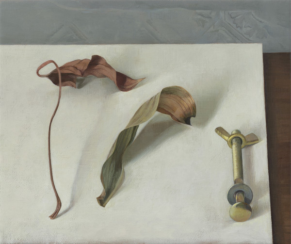Susan Angharad Williams, Forms on a Tabletop