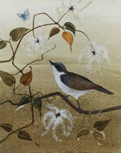 Harriet Bane, Lesser Whitethroat