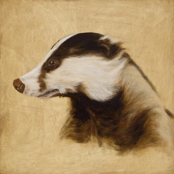 Camilla Clutterbuck, Badger (Study)