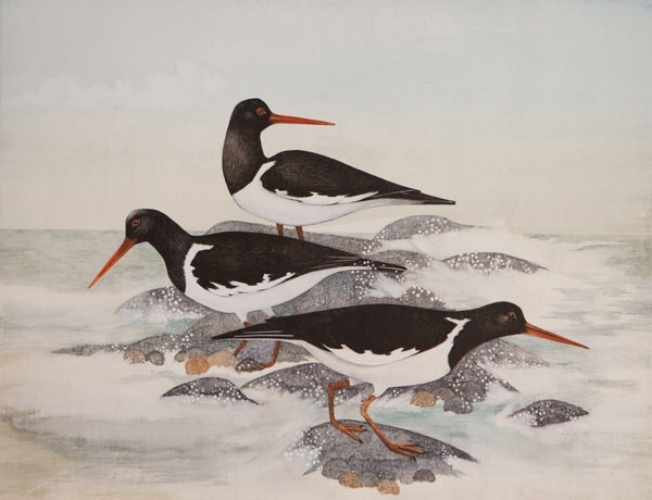 Harriet Bane, Three Oystercatchers
