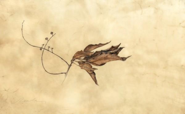 Kate Nessler, Leaves