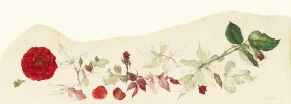 Kate Nessler, Red Roses II
