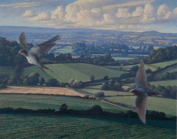 James Lynch, Swallows over Camelot