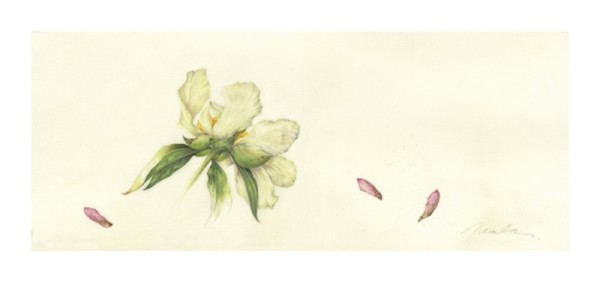 Kate Nessler, Pale Yellow Peony and Maple
