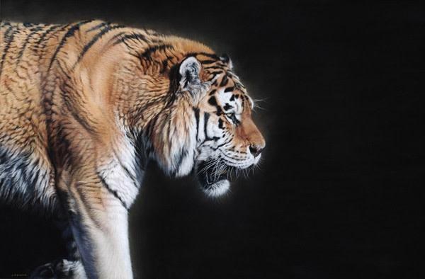 Gary Stinton, Prowling Tiger