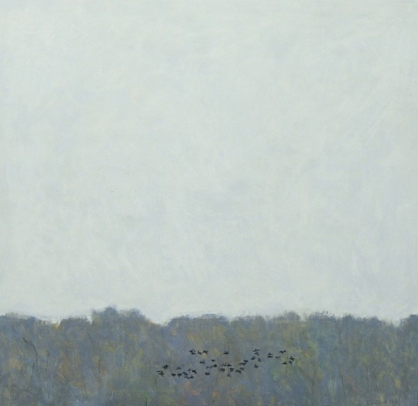 Ron Kingswood, November- Ducks