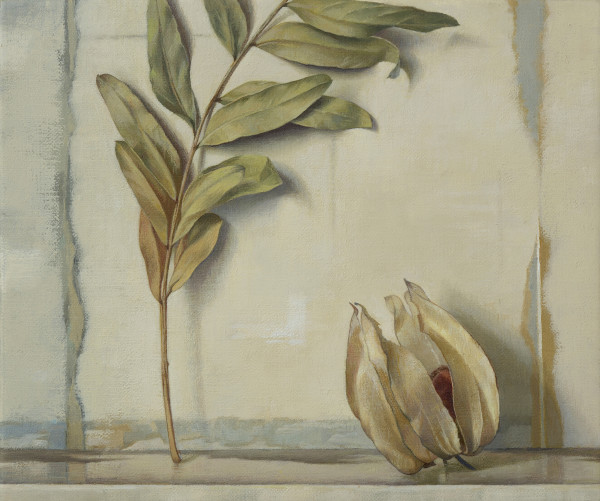 Susan Angharad Williams, Stem, Leaves, Physalis
