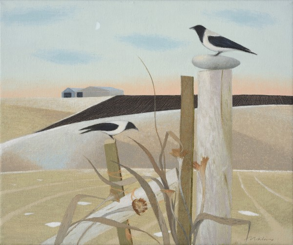 Tom Mabon, Posts, Crows and Stones