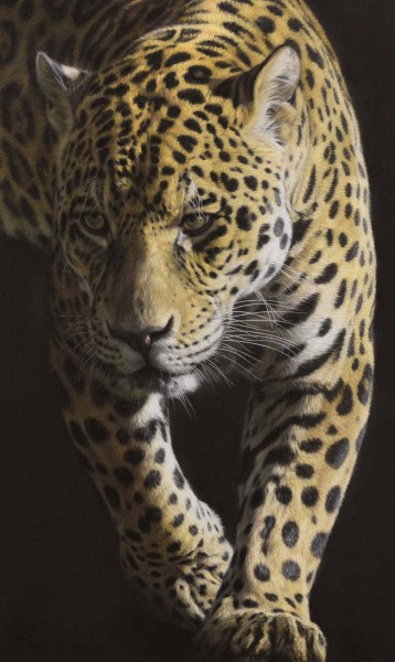 Gary Stinton, Jaguar - Large as Life V