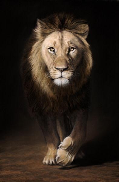Gary Stinton, Eye to Eye II - African Lion