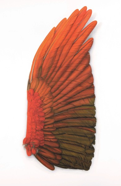 Elizabeth Butterworth, Large Red Wing