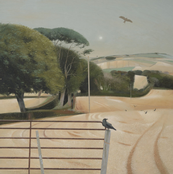 Tom Mabon, Crows, Kite and Harvest Fields
