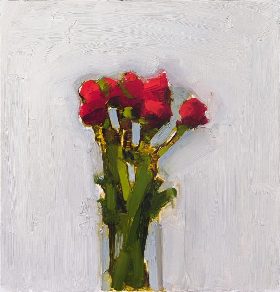 Stanley Bielen, Scarlet Ranunculus, 2015