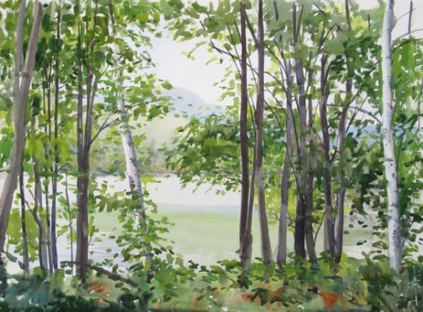 Elissa Gore, Summer Lake 5, 2014