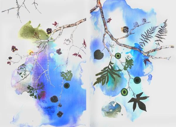Marilla Palmer, Fruit of the Japanese Maple, 2013