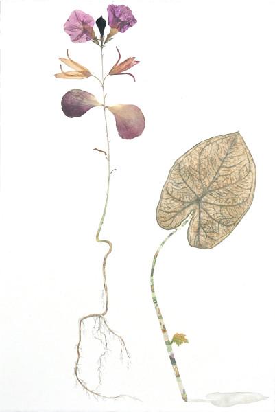 Marilla Palmer, Velvet Leaning, 2016