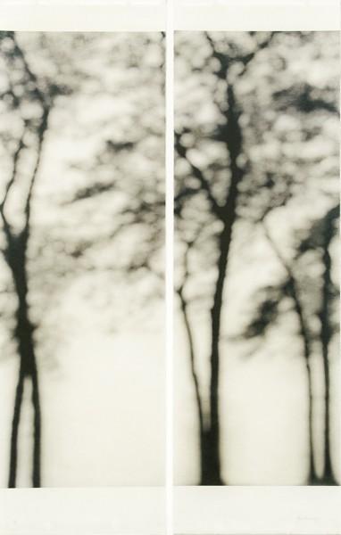 Jeri Eisenberg, Lakeshore, Chicago, 2006