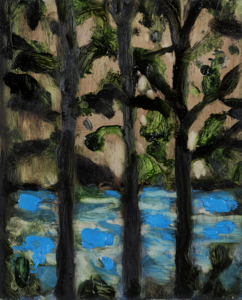 Suzy Murphy, Through the Trees and Into the Lake, 2017
