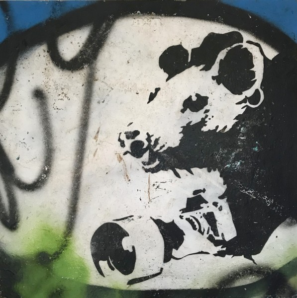 Banksy, Paparazzi Rat from Melbourne., 2006