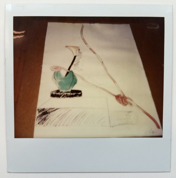 Andy Warhol, unique polaroid of