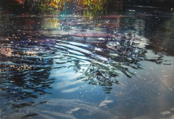 David Kessler, Surface Shimmer
