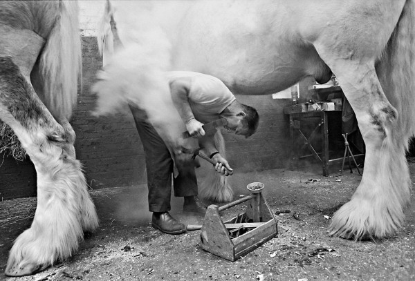 Tony Sleep, Farrier - Shire Horse, 1990